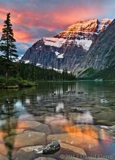 Mount Edith Cavell at Sunrise, Jasper National Park, Alberta, Canada One of my most favourite places on earth Places Around The World, Oh The Places You'll Go, Places To Travel, Places To Visit, Around The Worlds, Travel Destinations, Edith Cavell, Photos Voyages, Adventure Is Out There
