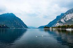 22 отметок «Нравится», 2 комментариев — Anna Ritman Photography (@anna.ritman.photos) в Instagram: «Como lake #como #lecco #italy #lake #mountain #swan #river #summer #journey #travel #view…»