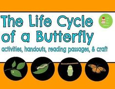 Writing Activities, Craft Activities, Butterfly Life Cycle, Reading Comprehension Passages, Journal Template, Vocabulary Cards, Cut And Paste, Life Cycles, The Life