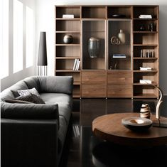 Home Design and Interior Design Gallery of Beautiful Good Living Room Couch