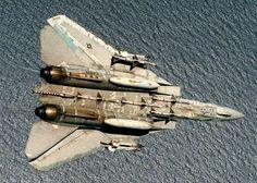 vf-24 fighting renegades fighter squadron f-14a tomcat cvw-9 uss kitty hawk cv 63 aim-9 sidewinder aim-7 sparrow aam missile