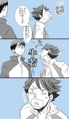 Haikyuu Oikawa Ushiwaka
