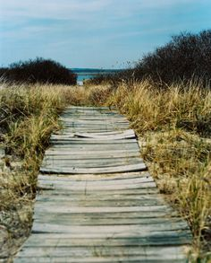I just want to sit down on the beach, wrapped up in a blanket, and wait for anything that comes my way.