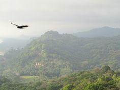 """""""Sla je vleugels uit en voel de inspiratie"""" (dat gevoel kreeg ik toen ik deze foto maakte in Costa Rica)"""