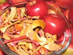While making a large pot of applesauce, I chose not to discard the nutrient-rich…