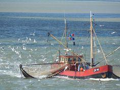 onderweg naar Terschelling, vissersboot