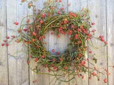 Rosehip and curly willow wreath  Beautiful