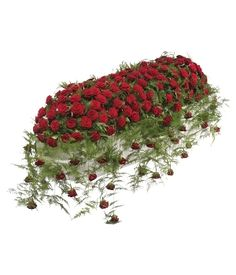 Gorgeous red Roses arranged as a luxurious casket spray. Funeral flowers from Mad Lilies Florist, Banstead, Surrey Funeral Bouquet, Funeral Flowers, Wedding Flowers, Large Flower Arrangements, Funeral Flower Arrangements, Asparagus Fern, Funeral Caskets, Casket Flowers, Funeral Sprays