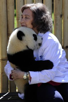 Animals Who Need Hugs Spain's Queen Sofia hugs a panda cub during her visit to Madrid's Zoo on March 2011 in Madrid. Panda Hug, Panda Love, Cute Panda, Panda Bears, King Of Spain, Hug Pictures, Baby Animals, Cute Animals, Animal Hugs