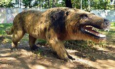 andrewsarchus-predateur