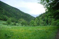 Położyć się w trawie i zapomnieć o bożym świecie...Bezcenne ;)