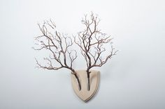 Alternative Wall Trophies Replace Animal Heads With Beautiful Plants - DesignTAXI.com