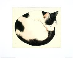 Cat Pictures - Including Cat Art, Cat Tattoos And Cat Photography