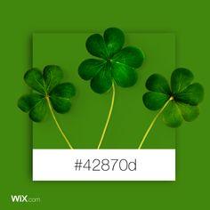 Color Palette Inspiration | Saint Patrick's Green #42870d