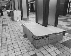 Tokyo 1994, Ryuji Miyamoto