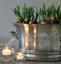 Zilveren schaal met bloembolletjes.