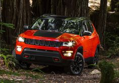 2017 Jeep Compass Is Here And It Looks Like Grand Cherokee's Little Brother The new 2017 Jeep Compass has finally been revealed, coming as a replacement for not one, but two models – Compass and Patriot and positioning itself between Renegade and Cherokee. Although spy photos of the new Compass have been cruising on the net for several weeks now, the official debut in...