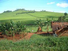 Water Color Picture: Uganda - Travel Guide and Tourist Attractions