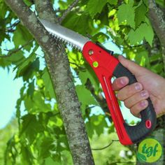 TGF Pruning SawThis is a convenient and lightweight folding saw...