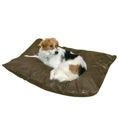 Happy Hounds Bosco Dog Bed - Large (36 x 48&#34) - Godiva $65.99