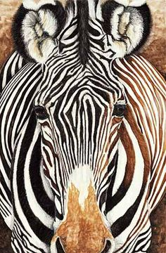 Wild Faces - African Contours - wildfacesgallery.com