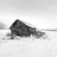 The shack, Alberta, Canada, 2016 - by Sandra Herber, Canadian Fairy Tales, Cabin, Alberta Canada, House Styles, Photography, Houses, Home Decor, Homes, Photograph