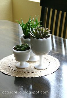 Plant succulents in thrifted milk glass to make these cute centerpieces.   http://www.acasarella.net/2012/09/marrying-my-obsessions.html#