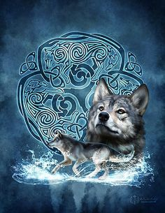 WINTER WOLF - gorgeous wolves with vibrant colors surrounded by an elaborate and completely new and original Celtic Knotwork Triskele design by Celtic Knotwork artist Brigid Ashwood