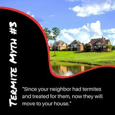 Check out our Termite Myths blog to learn the truth to this myth: www.goterminator.com/blog/debunking-termite-myths #TerminatorTPC #TermiteMyths #TermiteInfo Diy Termite Treatment, Termite Pest Control, Termite Inspection, Concrete Pad, The Only Way, The Neighbourhood, The Incredibles, Blog, Check