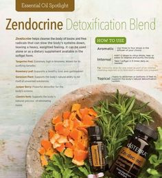 Infographic all about doTERRA Zendocrine cleansing essential oil blend. Tips and ideas how to use essential oils. Zendocrine Doterra, Doterra Essential Oils, Essential Oil Diffuser Blends, Essential Oil Uses, Oil Benefits, Healthy Life, Essentials, Doterra Products, Infographic