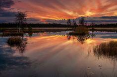 Sunrise at Lake Laanemaa in the Orkjarve Nature Reserve, Estonia Poems Beautiful, Beautiful Places, Baltic Region, Baltic Sea, Nature Reserve, Nature Pictures, Sunrise, Country Roads, Ocean