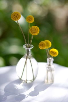 #Yellow simple centerpiece.