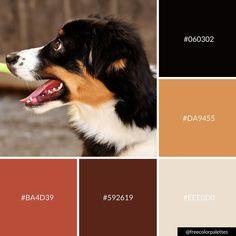 Cute dogs | color palette inspiration | digital art palette and brand color palette