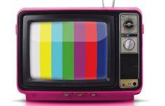 TV's 5 Underviewed Gems for Grownups
