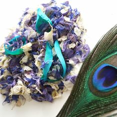 """How beautiful is this """"Peacock"""" mix 😍 A mixture of delphiniums, cornflower and emerald roses. COMING SOON! Peacock Theme, Peacock Wedding, Green Wedding, Delphiniums, Wedding Confetti, Dusty Blue, Rose Petals, How Beautiful, Weddingideas"""
