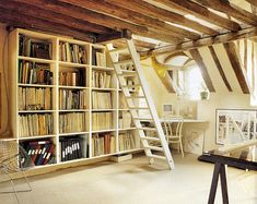 with the ladder to another floor....amazing way to attic from guest. lvoed this in farmhouse apt