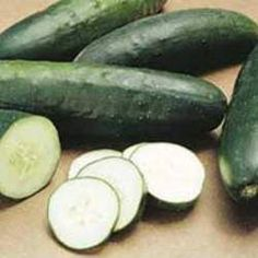 Cucumis sativus - It produces an abundance of 8-9 inch dark green cucumbers with excellent mild flavor.* Valued by chefs for its delicious flavor and crisp flesh. Cucumber On Eyes, Cucumber Seeds, Cucumber Salad, Squash In Oven, Avocado Health Benefits, Cucumber Recipes, Seeds For Sale, Low Calorie Snacks, Beauty
