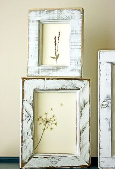 DIY pressed flower art.  ~ Mod Podge Rocks! (our bedroom)                                                                                                                                                      More