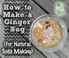 """How to Make a Ginger Bug ....A ginger bug is a culture of beneficial bacteria made from fresh ginger root and sugar. It is similar to a sourdough starter for bread The ginger imparts its flavor and as it naturally ferments, creates a mixture of beneficial bacteria.   Ginger Bug is the base for many homemade sodas and tonics. We use it to make Root Beer, Ginger Ale, Fruit """"sodas"""" and more.Once this ginger bug is made, it can be kept alive and used continuously to make healthy soda at any…"""