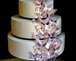 "This is EXACTLY what my wedding cake was ""suposed"" to look like ugh. stupid cake people."