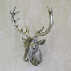 Stag Deer, Wall Ornaments, Chic Living Room, Moose Art, Chrome, Lounge, Gifts, Animals, Ebay