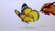 butterfly realistic easy drawing simple painting steps butterflies draw drawings 3d paintings pencil sketch paper illustration paintingvalley optical
