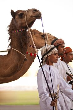 Its on my bucket list. A ride on a camel !!