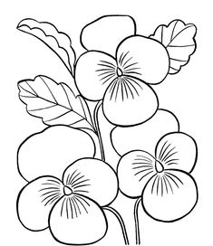 Flower coloring pages - Printable coloring pictures of flowers ...