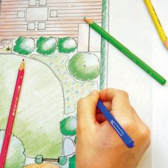 Colorize garden plan with colored pencils
