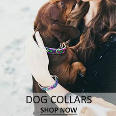 friendship collar - dog collar Matching collars and bracelets for you and your animal baby! Soo cute!