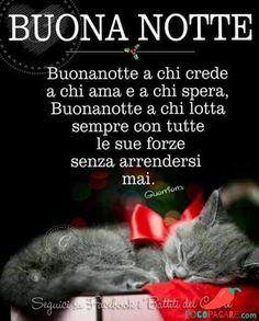Immagini per Buonanotte amici Whatsapp - Pocopagare.com Good Morning Good Night, Good Morning Quotes, Good Mood, Facebook, Dolce, Pets, Animals, Nighty Night, Messages