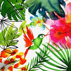 Margaret Berg Art : Illustration : tropical / jungle ❤ liked on Polyvore featuring home, home decor, wall art, backgrounds, tropical wall art and tropical home decor