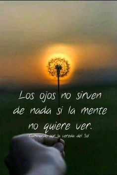 """From """"Recovery in Spanish: Spiritual Awakening - The Seeing Eye,"""" Anonymous. Translation: """"The eyes are useless if the mind doesn't wish to see. The Words, Cool Words, Spanish Inspirational Quotes, Spanish Quotes, Wisdom Quotes, Life Quotes, Affirmations, Reflection Quotes, Quotes En Espanol"""