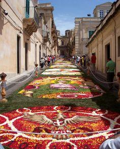 Infiorata, Noto, Sicily -  lavocedellisola.it